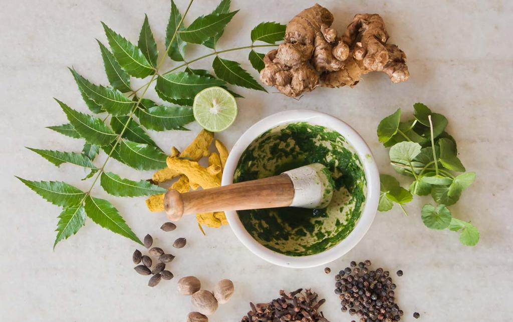 Online – Ayurvedisch Kochen: Basics I